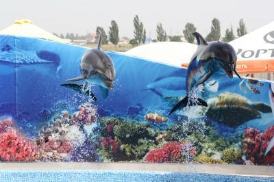 Новый дельфинарий на Азове