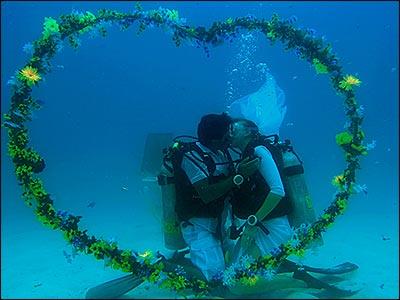 Медовое путешествие