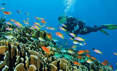 Мальдивский туризм изменился