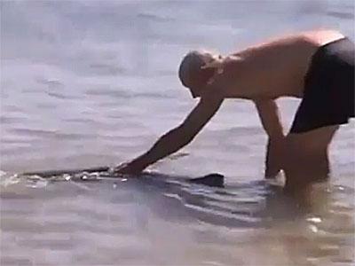 Спасший от акулы детей уволен за это
